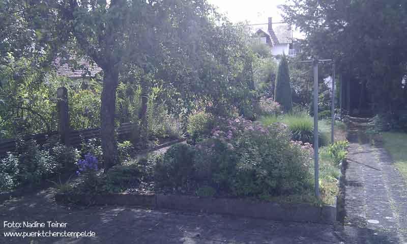 Garten Urzustand
